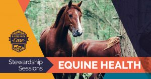 Raised With Care: Stewardship Sessions Equine Health