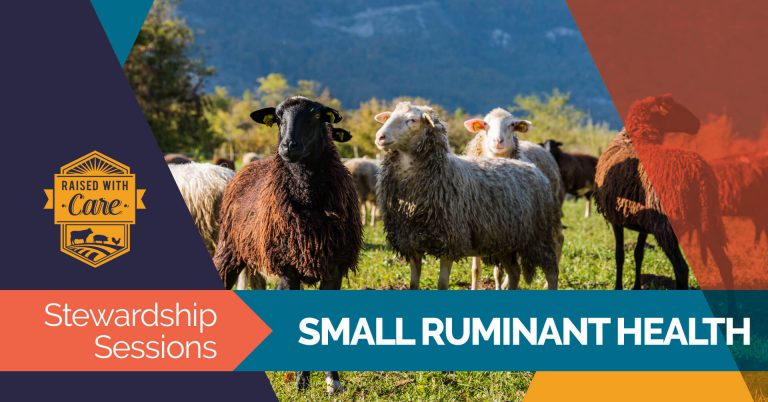 Raised With Care: Stewardship Sessions Small Ruminant Health